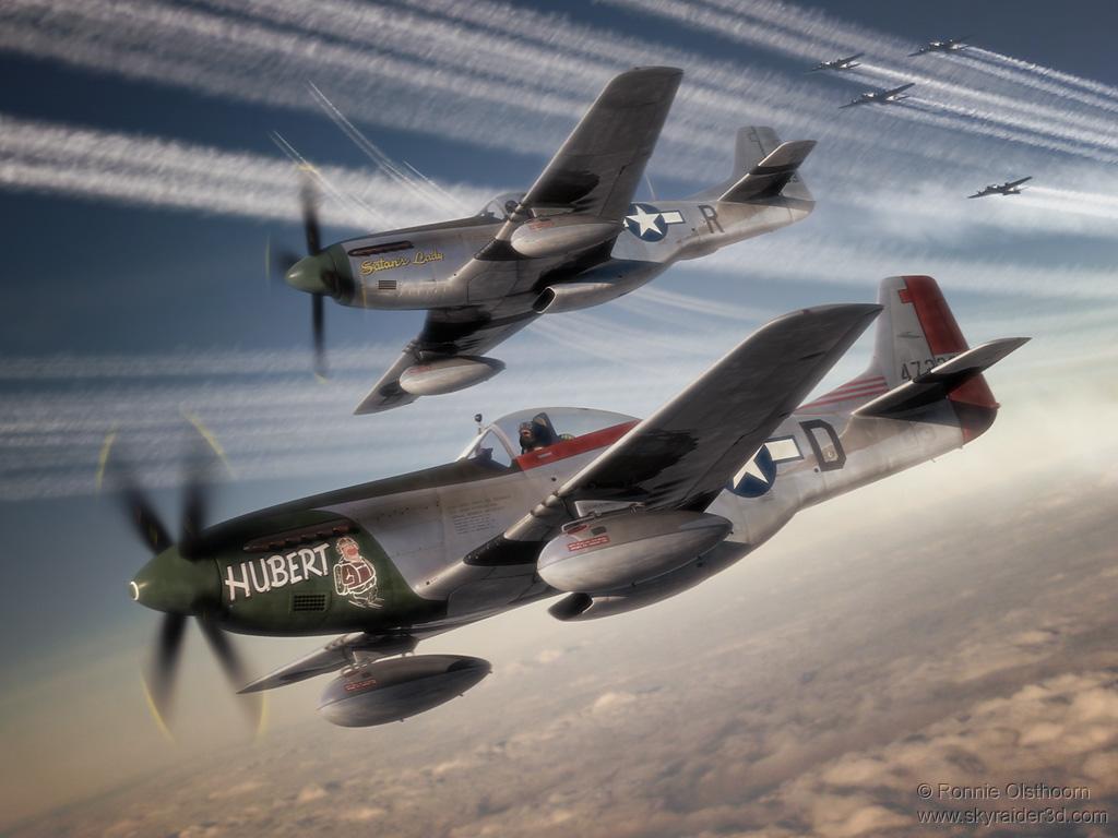 P 51 Mustang Art Skyraider's 3D Aviatio...